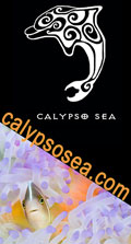 Web site banner image by T. Burnett of Calypso Sea